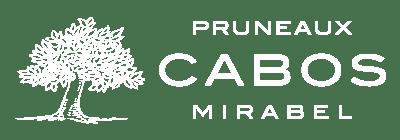logo maison cabos